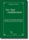 Tra i due mediterranei